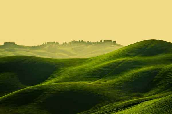 Carta da parati Toscana