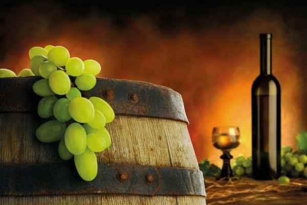 Carta da parati Uva e Vino