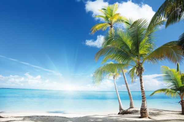 Carta da parati Caraibi