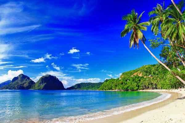 Carta da parati Spiaggia tropicale