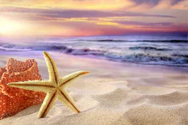 Carta da parati Tropical Beach