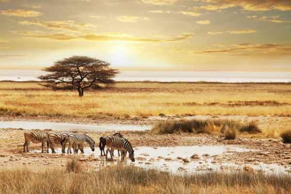 Carta da parati Tramonto in Namibia