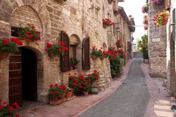 Carta da parati Assisi